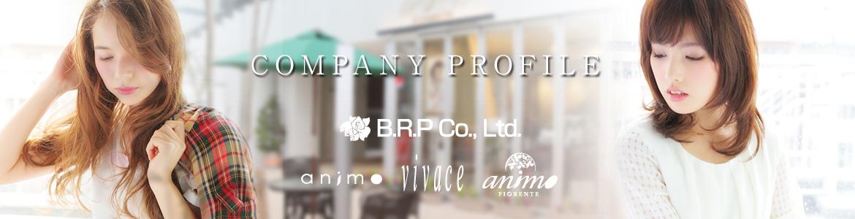 B.R.P PROFILE