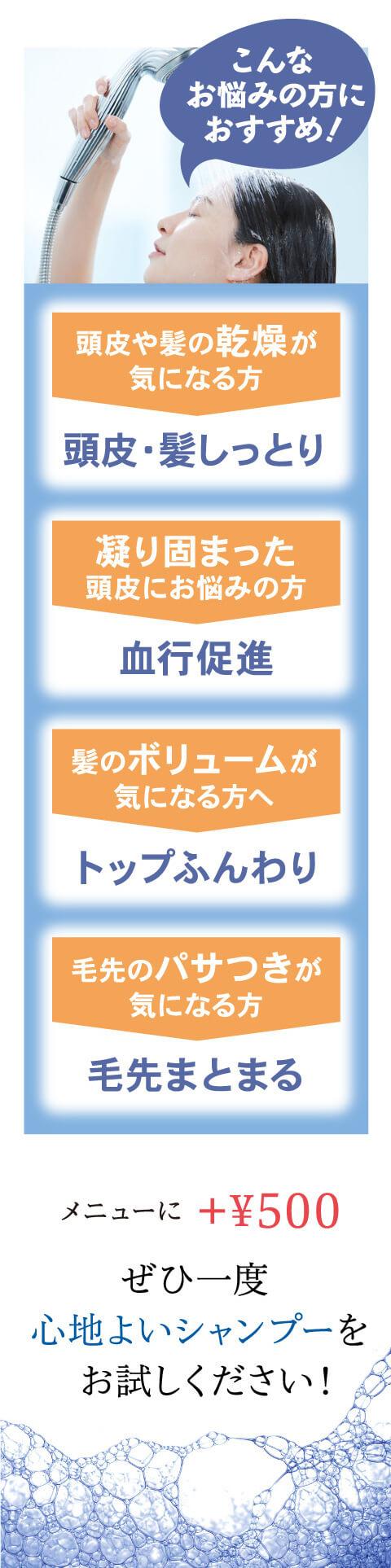 メニューにプラス500円